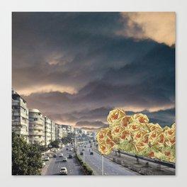 flower road Canvas Print