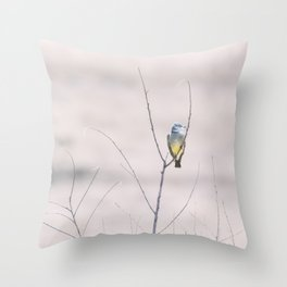 """Cassin's Kingbird 2"" by Murray Bolesta Throw Pillow"