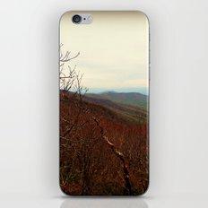Mountaintop Hideaway iPhone & iPod Skin
