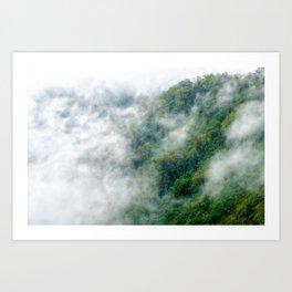 Rain Forest Fog Art Print