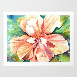 Double Peach Tropical Hibiscus Art Print