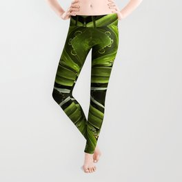 Dew Drop Jewels on Summer Green Grass Leggings