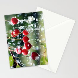 Cherries in the summer rain Stationery Cards