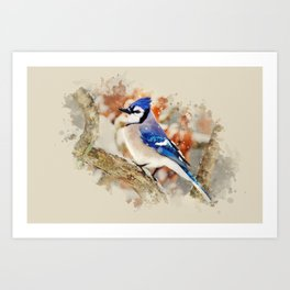 Watercolor Blue Jay Art Art Print