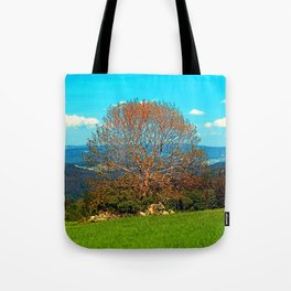 Lonely old tree in springtime scenery Tote Bag