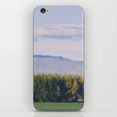 Scenic Spring iPhone & iPod Skin