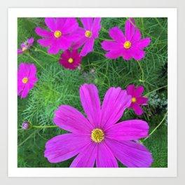 Fun fuchsia flowers Art Print