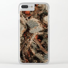 Colors of the Southwest Clear iPhone Case