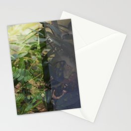 Double Exposures, January Series 11 Stationery Cards