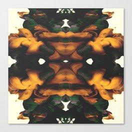 Stream. Canvas Print