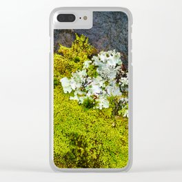 Tree Bark with Lichen#8 Clear iPhone Case