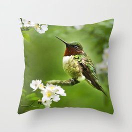 Hummingbird Flora Throw Pillow