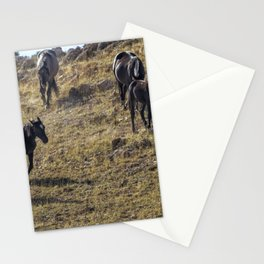 Garcia Herding His Band Stationery Cards