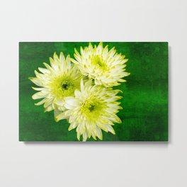 Chrysanthemums on Green Metal Print