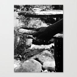 B&W Fountain Canvas Print