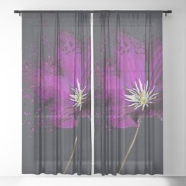 Clematis Explosion Sheer Curtain