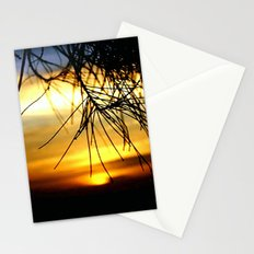 Sunset between Norfolk pine Needles Stationery Cards