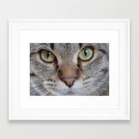 arya Framed Art Prints featuring Cat by Kellie Eickstead