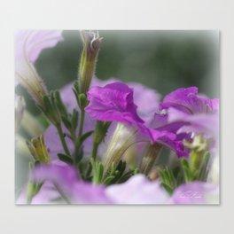 Blossoms in purple Canvas Print