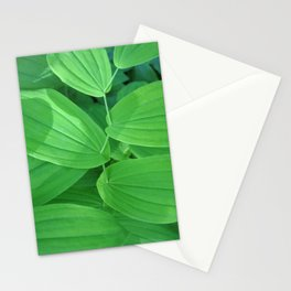 Nature's Sewing Thread Stationery Cards