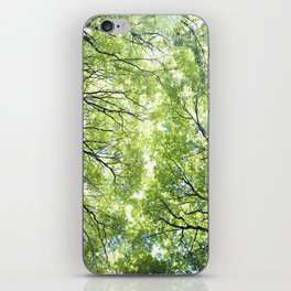 Green Maples iPhone Skin