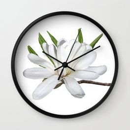 The Flower is the Star (Magnolia) Wall Clock
