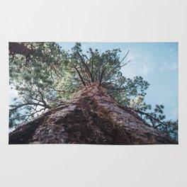 California Mountain Tree Rug