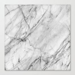 Carrara marble Canvas Print