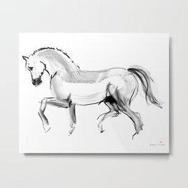 Horse (dressage) Metal Print