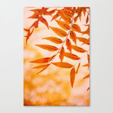 Sun Kissed Canvas Print