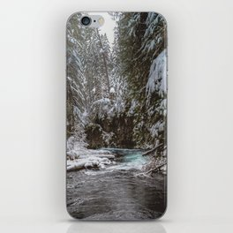 A Quiet Place - Pacific Northwest Nature Photography iPhone Skin
