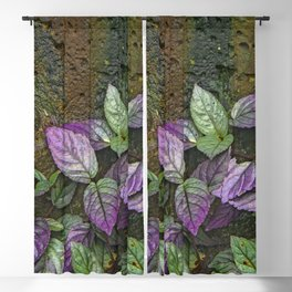 Purple and Green Leaves on Multi-Colored Bark Blackout Curtain