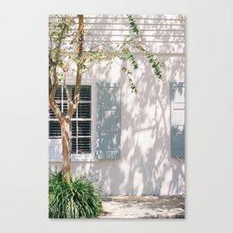 Charleston Blue Shutters Canvas Print
