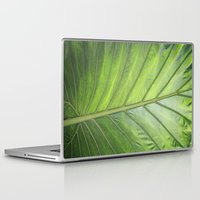 palm Laptop & iPad Skins featuring Palm by ALLY COXON