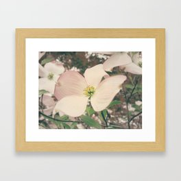 Fade to Spring Framed Art Print