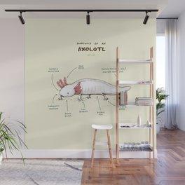 Anatomy of an Axolotl Wall Mural