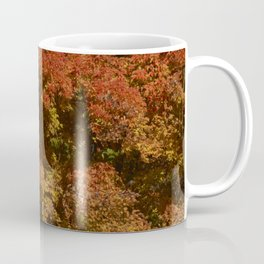 Autumn in Canada Coffee Mug