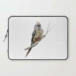 Speckled Mousebird by Teresa Thompson Laptop Sleeve