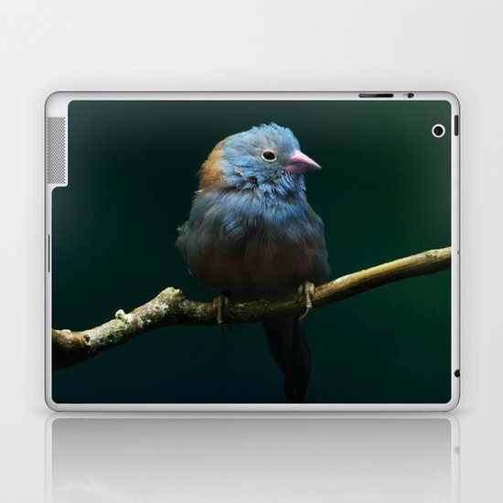Cordon Bleu Canary Laptop & iPad Skin