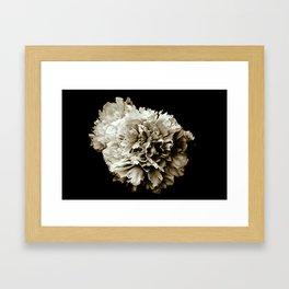 Peony Flower Portrait Framed Art Print