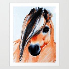 Norwegian Fjord Horse Portrait Art Print