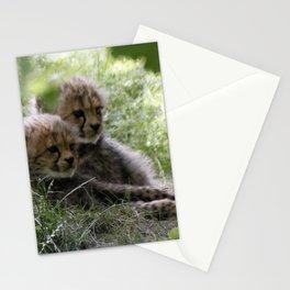 Cheetah20150906 Stationery Cards
