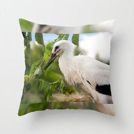 Orphaned one White Stork Throw Pillow