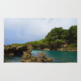 Ague Cove- Guam Rug
