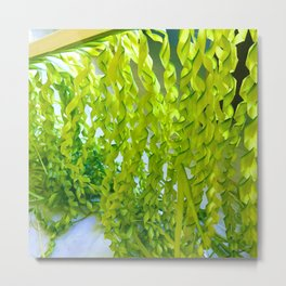 Palm Leaves Art Metal Print