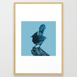 Steller's Jay Framed Art Print