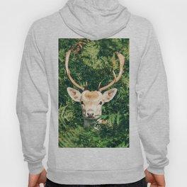 deer cerf 4 Hoody