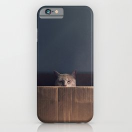 Cat in a box. The Zen cat master. Photography iPhone Case