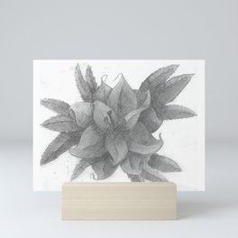 Graphite Lily Mini Art Print