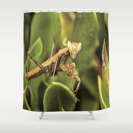 Praying Mantis On Green Garden Background Shower Curtain
